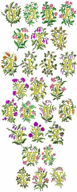 "ABC Designs Blossoms Font Machine Embroidery Designs Set 5""x"