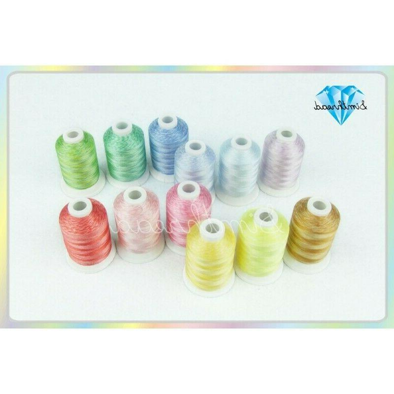 variegated 12 colors polyester embroidery machine 1100