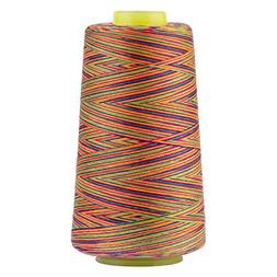 Rainbow Polyester Sewing Thread Variegated Used for Quilting